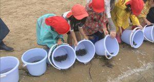 稚魚や幼生を放流して、海の資源を育む。海の未来につながる取り組みをご紹介します!