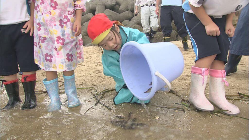【山口市】カサゴの稚魚を放流