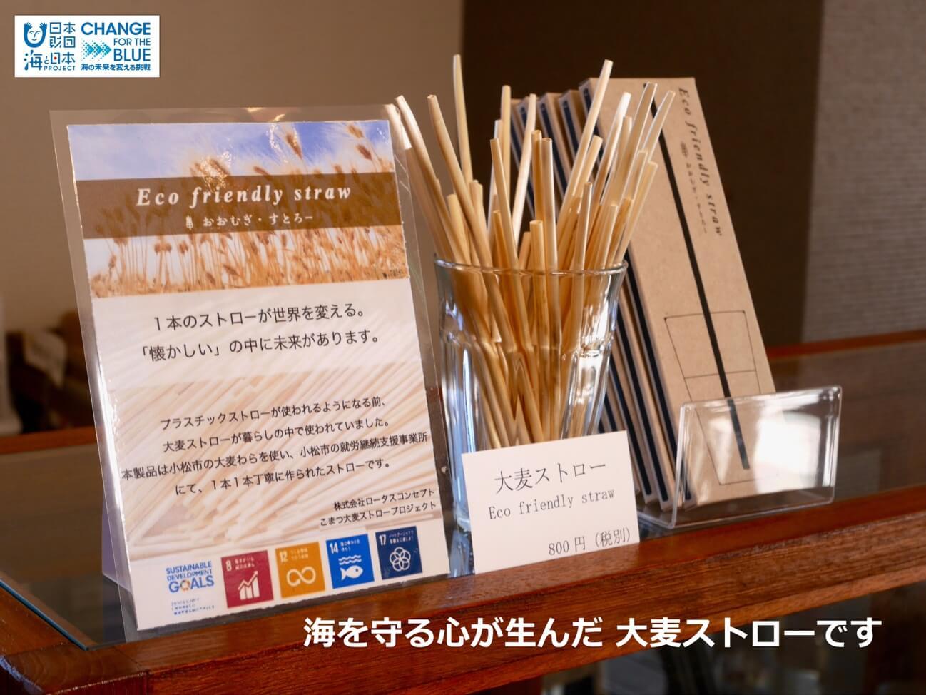 再生可能な紙や大麦のストローを通して環境問題を見つめ直そう