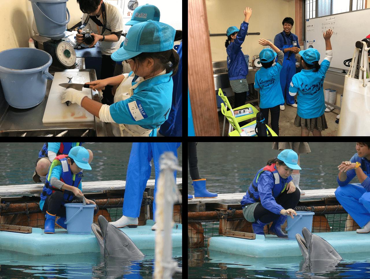 水族館のお仕事を体験
