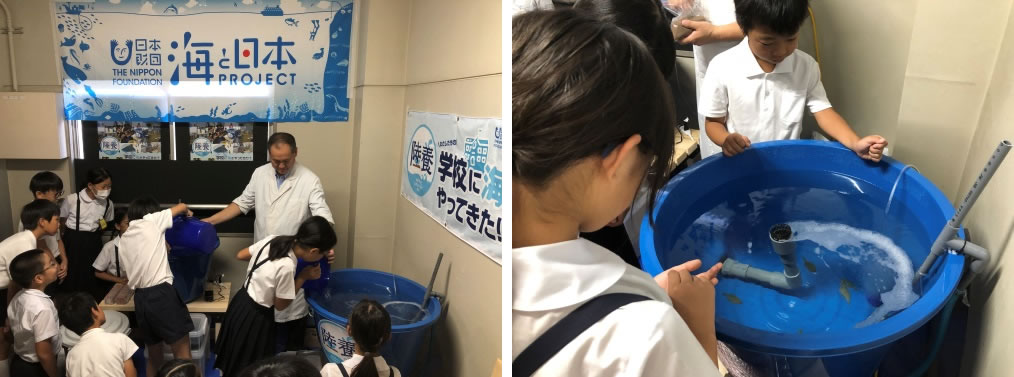 お魚 再受け入れ式(10月1日)