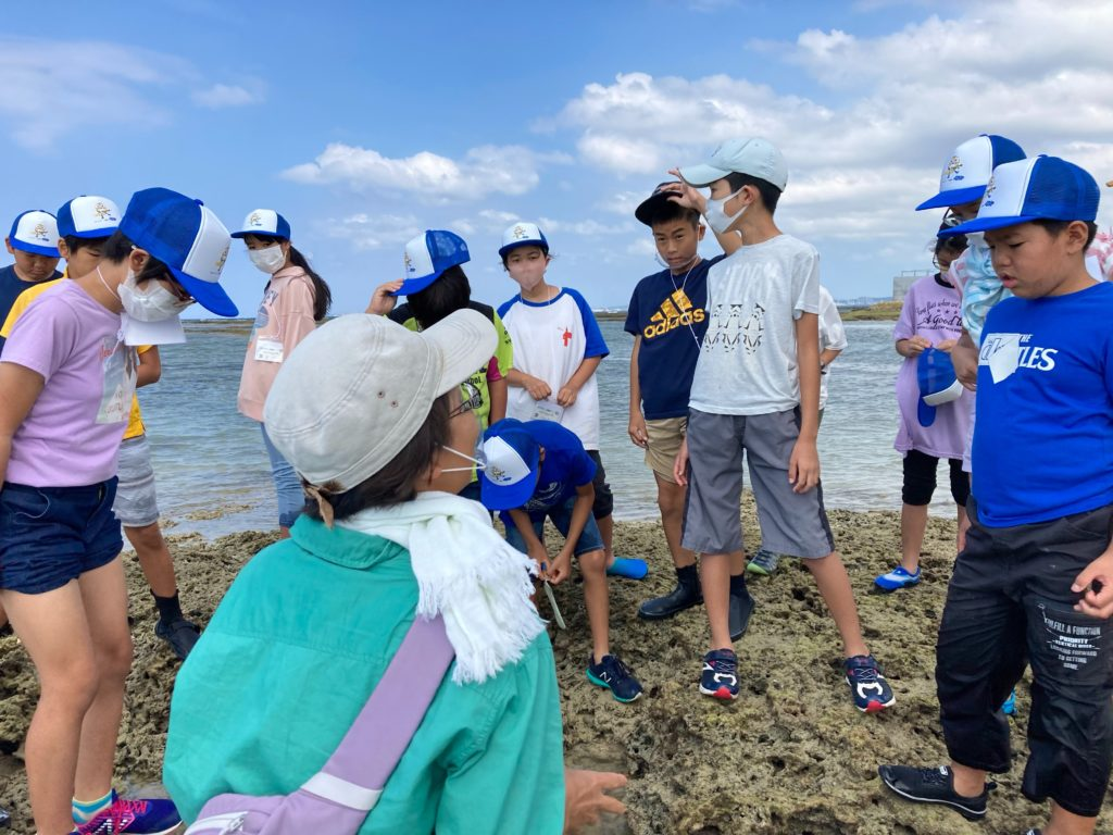 サンゴ礁を守りたい!サンゴとサンゴ礁に暮らす生き物を学んで実感