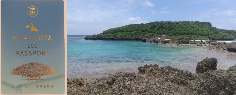 島の宝「ミヤコブルー」は島を愛する全ての人で守る!